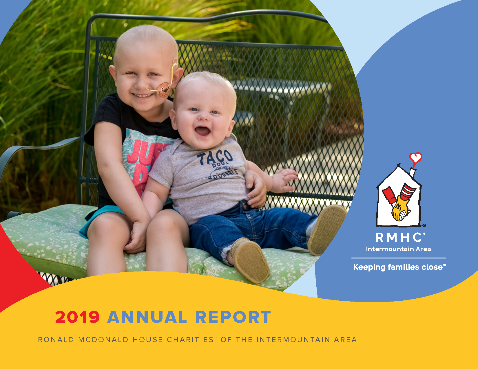 Special Message from Carrie Romano/2019 Annual Report Banner